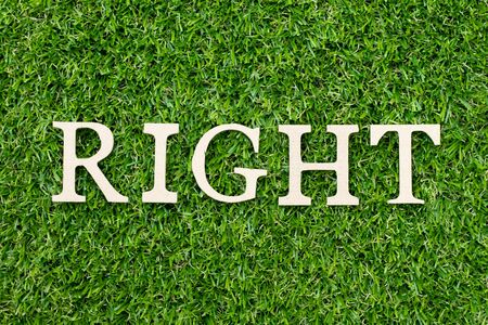 Wood alphabet letter in word right on green grass background 스톡 콘텐츠
