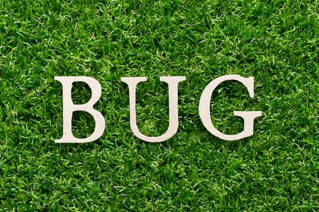 Wood alphabet in word bug on artificial green grass background