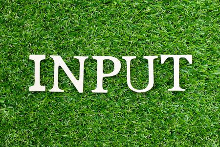 Wood alphabet letter in word input on green grass background