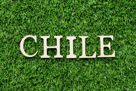Wood alphabet letter in word Chile on green grass background
