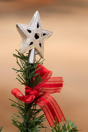 Silver decoration star on green christmas tree with red ribbon background
