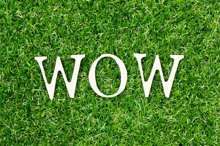 Wood letter in word wow on green grass background