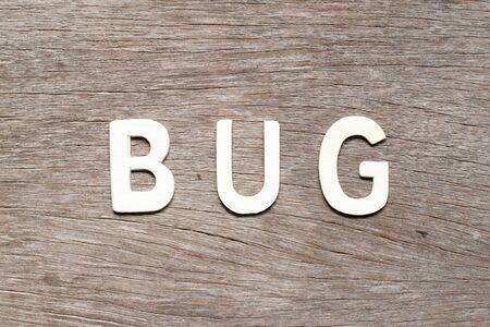 Alphabet letter in word bug on wood background