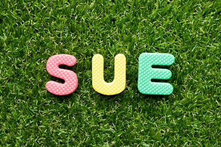 Toy foam letter in word sue on green grass background