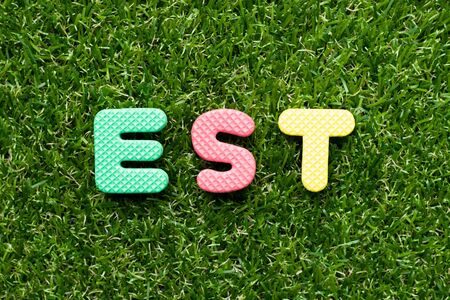 Toy foam letter in word est on green grass background