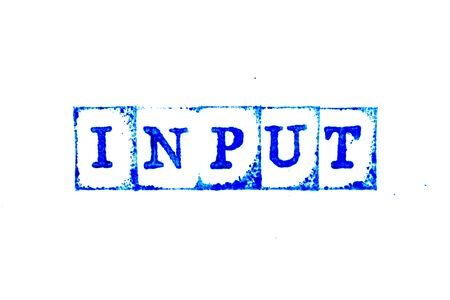 Blue ink of rubber stamp in word input on white paper background