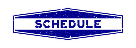 Grunge blue schedule word hexagon rubber seal stamp on white background Vettoriali