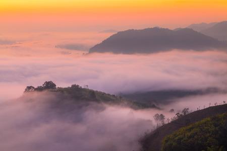 elusive: Mountain and fog