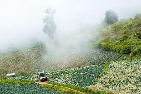 phu: Phu Tab Berk hill, Phetchabun province, Thailand.