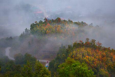 loei: sunlight and fog at phu thok chiang khan in loei province thailand