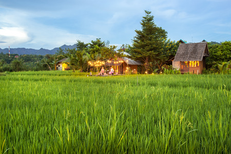 Home Field at Mea La Noi City in Mae Hong Son , Thailand Stock Photo