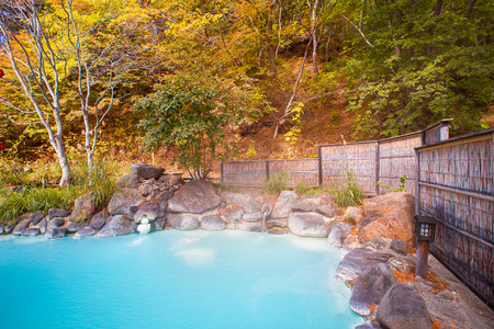 Japanese open air hot spring (onsen)