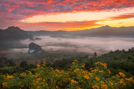 Ochtend mist op zonsopgang in de Phulanka, Phayao