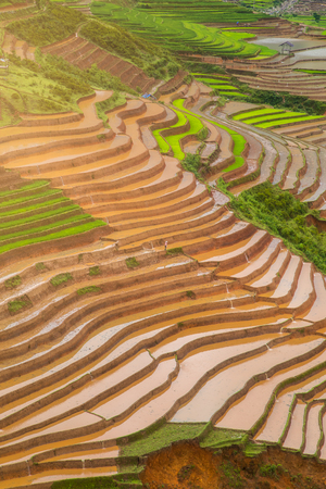 le: Terraced ricefield in water season at Mu Cang Chai , Vietnam Stock Photo