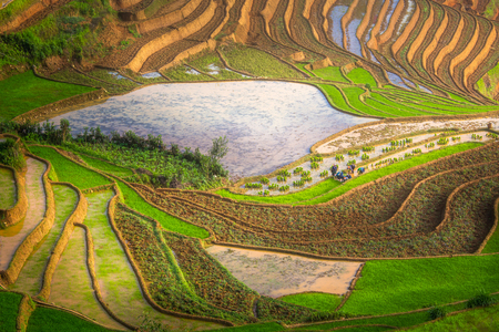terraced field: Terraced ricefield in water season at Mu Cang Chai , Vietnam Stock Photo