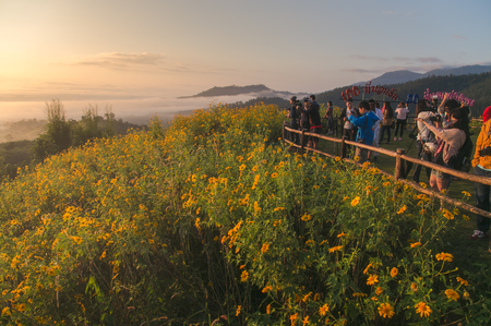 MAE HONG SON, THAILAND - NOVEMBER 15, 2014 : People waiting see sunrise on the morning at YUN LAI view point of Pai town above the Chinese Village at Pai district, Mae Hong Son province, Thailand Éditoriale