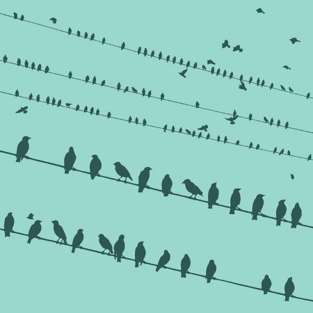 starling: Birds on wire vector