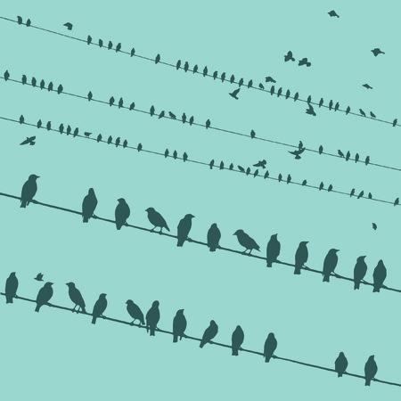 Birds on wire vector