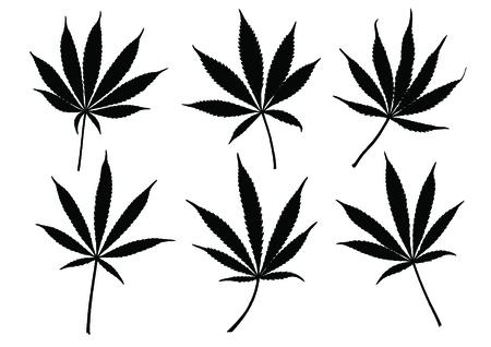 weeds: Marijuana leaves vector