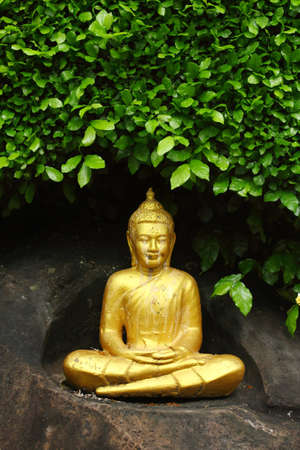 smiling buddha: Golden Buddha and green leaf