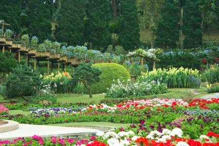 Beautiful garden in spring , Doi Tung ,Thailand