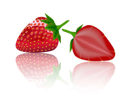beautiful strawberries illustration of a realistic