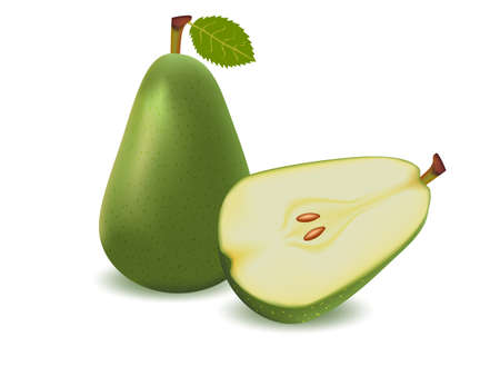 mellow: vector illustration   Pear on white background