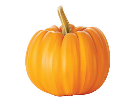 Isolated close - up of a realistic pumpkin
