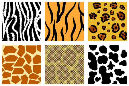 repeated: The animal skin seamless pattern set ( Illustration) Illustration