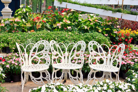 path cottage garden: The white chair in the beautiful garden