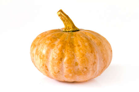 Small orange Pumpkin on the white background