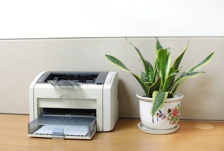 A Printer On Desk With An Aloe Bonsai In Office Stock Photo Picture And Royalty Free Image Image 9378505