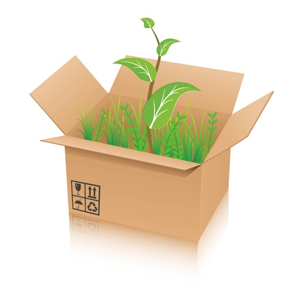 Illustration of a brown box with plants inside Stock Vector - 12270249