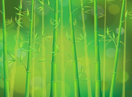bamboo tree: Bamboo