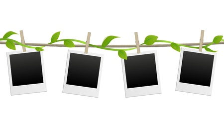 Illustration of polaroid pictures on a vine Vector