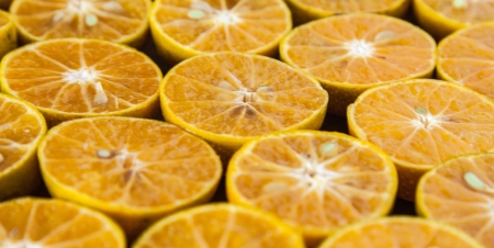 Oranges prepared for make an orange juice Stock Photo - 16475379