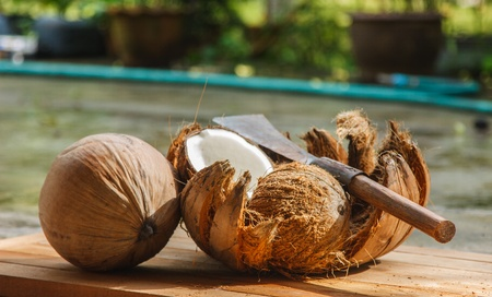 Knife use for break a coconut into two pieces Stock Photo - 16826004