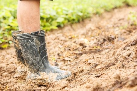 Homme asiatique porte la chaussure sale et boueux support à la ferme
