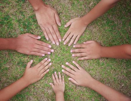 Imagen de la mano en la hierba verde como la forma del círculo Foto de archivo - 24823207