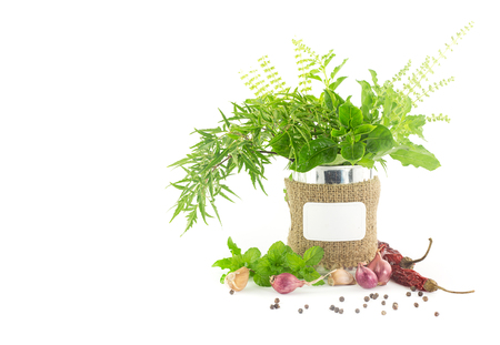 Fresh herbs on white background  with blank tag