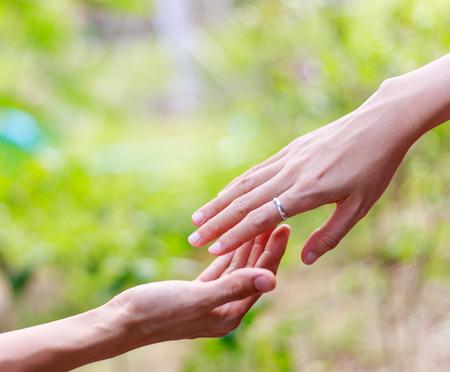 dando la mano: Ayudar a las manos - las manos juntas contra el fondo de la naturaleza