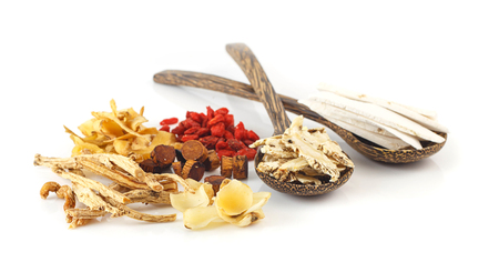 Group of chinese medicine herbs on white background