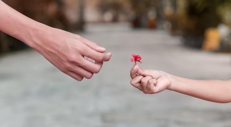 Petite main d'enfant tenant la fleur et donne à une autre Banque d'images