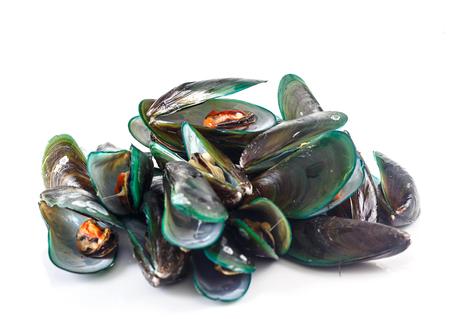 Groupe de fruits de mer - Moules sur fond blanc