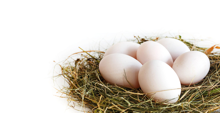 Close up of fresh duck eggs on straw against white
