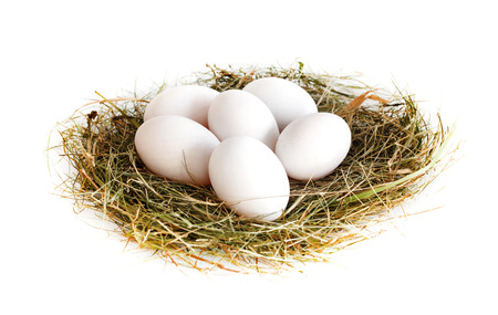 Group of fresh duck eggs on straw isolated on white Banque d'images
