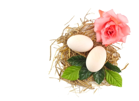 Happy easter day - white eggs on hay decorate with flower ,flay lay