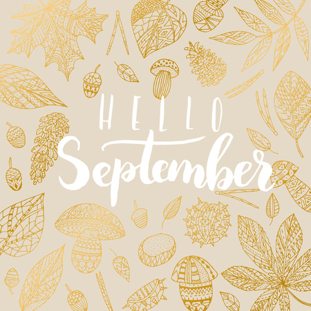 phrase: Elegant vector Hello September quote. Hipster calligraphic phrase. Leaves background. Illustration