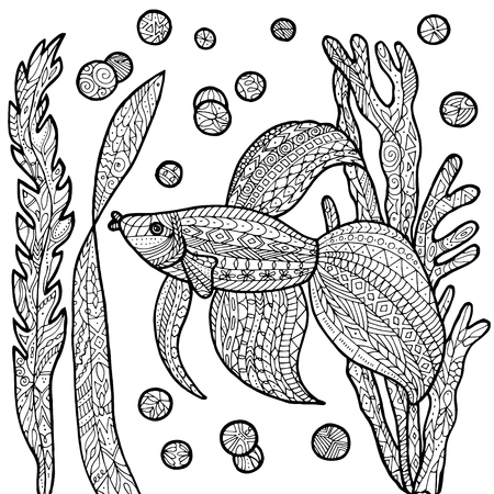 fighting fish: Vector fish tropical illustration for adult coloring book. Hand drawn coloring page. Illustration
