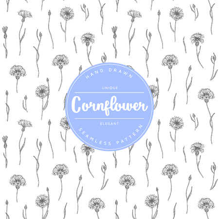 Vector hand drawn floral seamless pattern and backdrop.